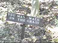 sign: YOU MAY WALK ON THE GRASS